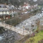 Rainy Lynton