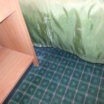Vomit on bedskirt/floor