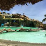 Foto de Islas Del Sol Morrocoy Resort