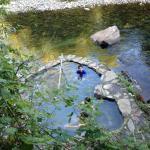 pozón al lado del río