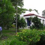 Villa viewed from gardens