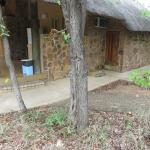 Foto de Mopani Rest Camp