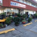 Hershey's Beach Ice Cream Shop