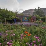 Meditation & Gardens