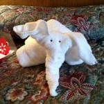 Daughter loved the elephant made of towels.