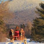 Never ending mountain views - group sleigh ride