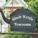 The Black Kettle Sassafras