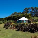 Yurt - gardens