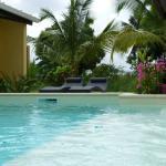 Photo of Amarante Studios & Pool