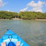 Kayak landing pier