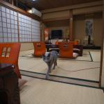 Photo of Fujiya Ryokan