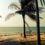 Photo de Hiep Hoa Resort