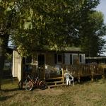 Mobil home ombragé