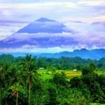 Trek sur les rizieres du Mount Agung