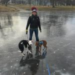 On the Frozen Pond
