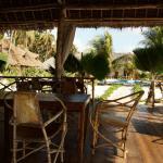 Photo de Garden Palms Hotel