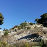 Vue du jardin d'emile