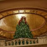 Grand Lobby/Rotunda Holiday Tree (Photo by Peter Ringenberg)
