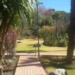 vue d une partie du jardin