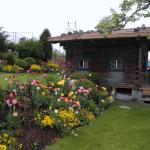 Martha's Traumgarten
