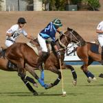 "Polo at Apes Hill ""Perfection is a Habit, not an Act"""