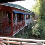 from Vixay's terrace: a few of the cabins