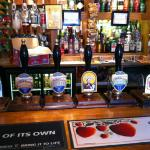Selection of Ales