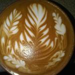 5 rosettas by Jared