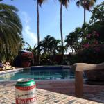 Enjoying an Aruban beer poolside at La Maison!