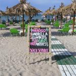 Best sun loungers on the beach