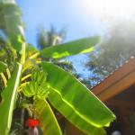 Sunny, tropical paradise!