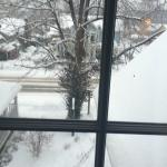 Our room view after the snow - such a pretty sight to wake up to