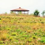 Palatlakaha Environmental and Agricultural Reserve - Pear Park