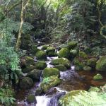 Photo of Serra das Aguas