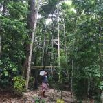 The start of our canopy walk experience