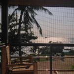 Mosquito net! :)