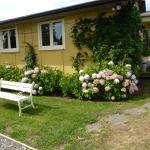 B&B Blossom Cottage Foto