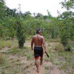 Foto de Arawak Jungle Hostel