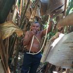 Eladio Having Lunch in the Jungle