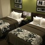 All New Guestrooms