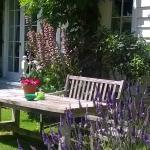 Garden Suite - french doors to garden