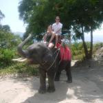 Photo de Seaview Elephant Camp