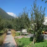 The Banjara Camp is nestled within an apple orchard.