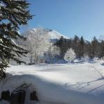 Morning view from bedroom window Feb 2015