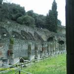Columns around gladiator training area
