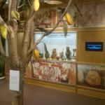 Sokolado Muziejus