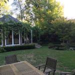 Garden/Outdoor dining