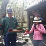 Feeding birds with Terry