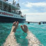 snorkelling off the Hornblower in the Blue Lagoon