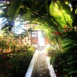 Gorgeous gardens!